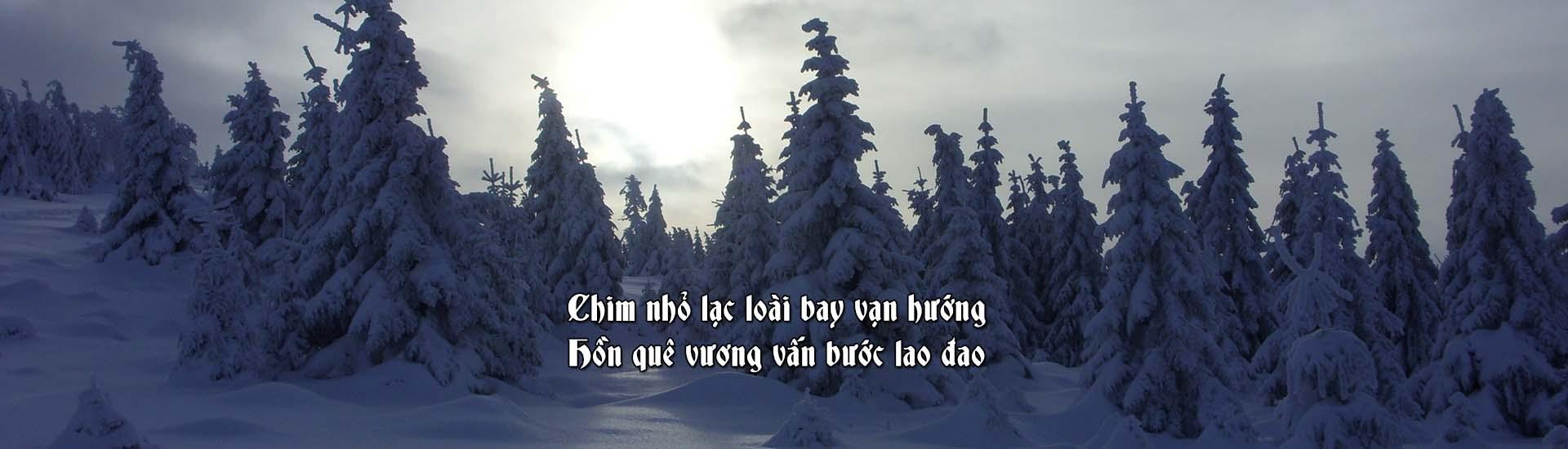 HDT-banner-winter